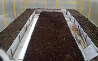 Как улучшить землю в теплице осенью