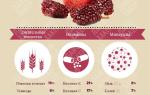 Что содержится в гранате фрукт
