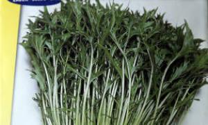 Японская капуста мизуна рецепты