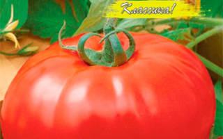 Сорт томата алые паруса