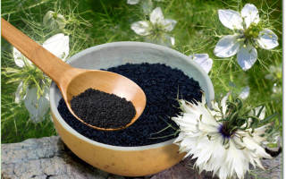 Семена черного тмина при беременности