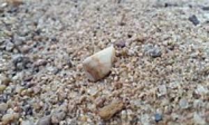 Существует три типа речных окатанных камней
